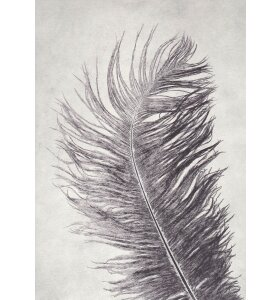 Pernille Folcarelli - A5 Feather grey