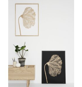 Monika Petersen Art Print - Valmue guld/sort 50x70