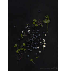 MAD/PLAKAT - Sorte bær, 50x70