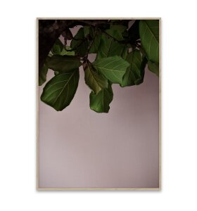 Paper Collective - Green Leaves 50x70