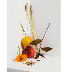 Cocoon Tea Artisans - Hvid Te