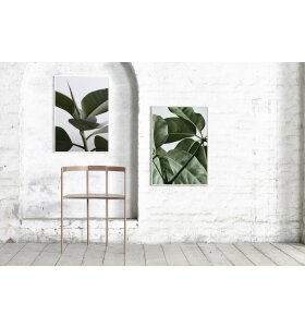 Paper Collective - Green Home 02 50x70