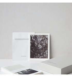MONOGRAPH - Note cards, Winter