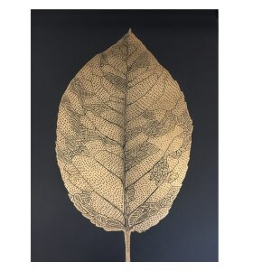 Monika Petersen Art Print - Birch Leaf black/gold 50*70