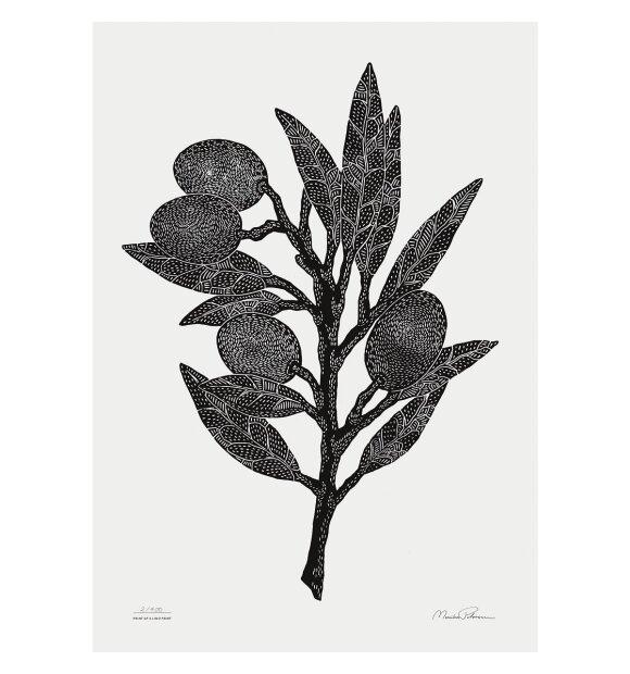 Monika Petersen Art Print - Olivengren 70x100