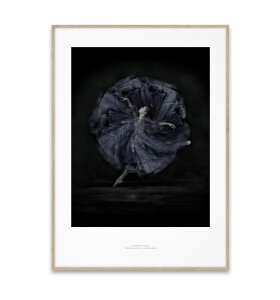 Paper Collective - Essence of Ballet 06, 30x40
