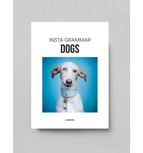 New Mags - Insta grammar Dogs