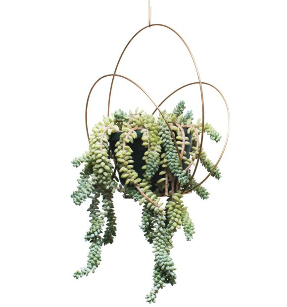 Planteplaneter/Kaja Skytte - Circle Podium, Medium