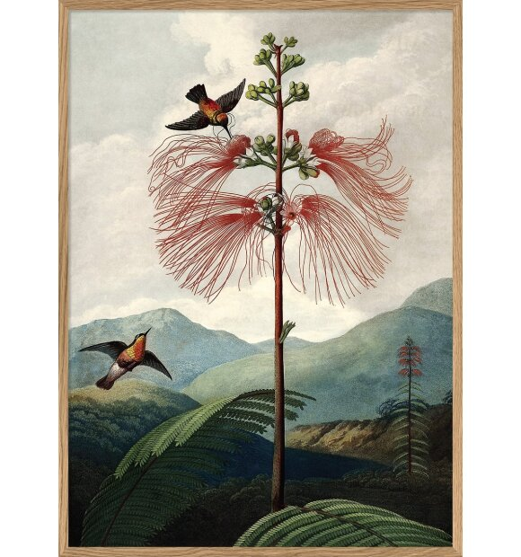 The Dybdahl Co. - Tree of flowers #9604