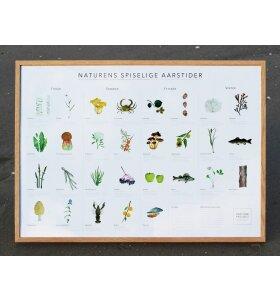 Pine Cone Project - Naturens Spiselige Aarstider 50x70