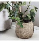 House-Doctor - Kurvesæt Plant