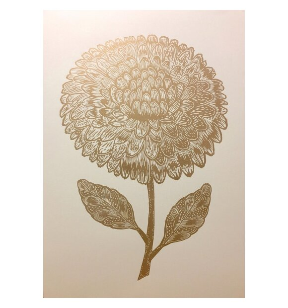 Monika Petersen Art Print - Dahlia 50*70