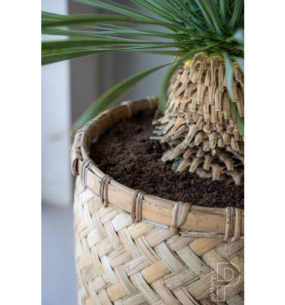 potterypots - Zayn XXS, Bamboo - Hent selv