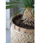 potterypots - Zayn XS, Bamboo - Hent selv