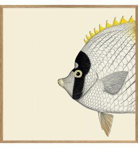 The Dybdahl Co. - Yellow Fish Head #5606
