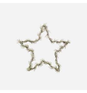 House Doctor - Krans Star, Natur Ø:25