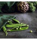 The Organic Company - Food Bag, mellem