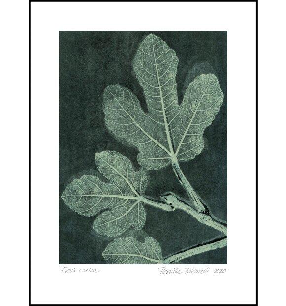 Pernille Folcarelli - Fig 1 Dark Teal 70*100
