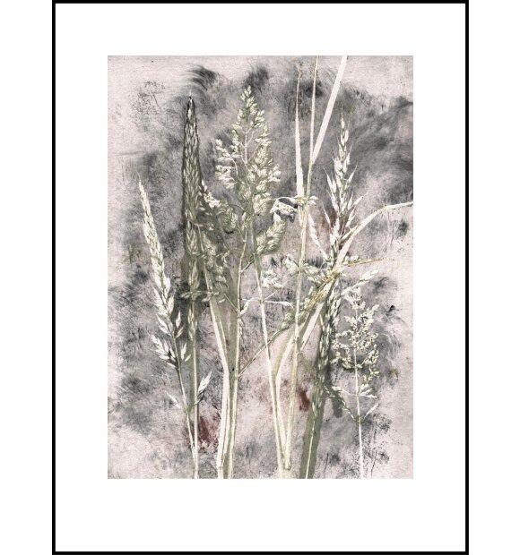 Pernille Folcarelli - Grass Haze 30*40