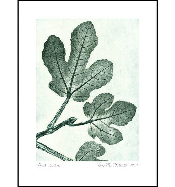Pernille Folcarelli - Fig 1 Green 30*40