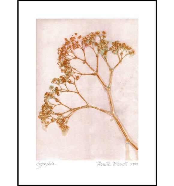 Pernille Folcarelli - Gypso Ochre 30*40