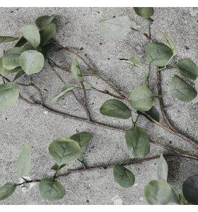 House Doctor - Gren Eucalyptus, Natur