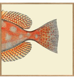 The Dybdahl Co. - Dottet Orange fish Tail #5611, Left