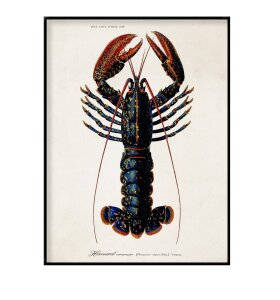 The Dybdahl Co. - Lobster 70*100