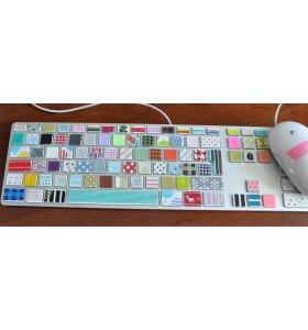 mt - Masking Tape - 5 pack suite n pink